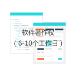 软件著作权(6-10工作日)
