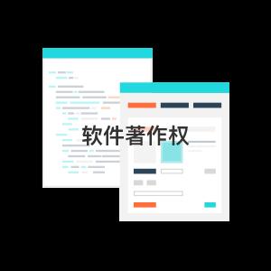 軟件著作權(4)